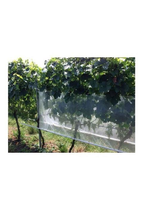 Insektenschutznetz weiss transparent