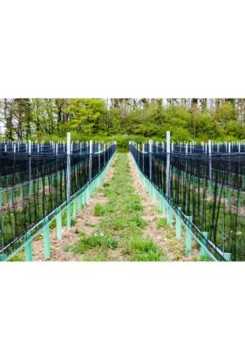 Whailex Hagelschutznetz 1.00 m